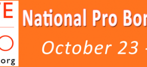 National Pro Bono Week 2016
